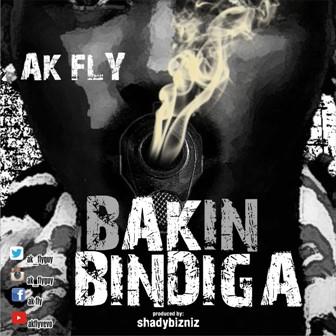 ak-fly-1